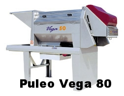 Puleo Vega 80 Destemmer Crusher