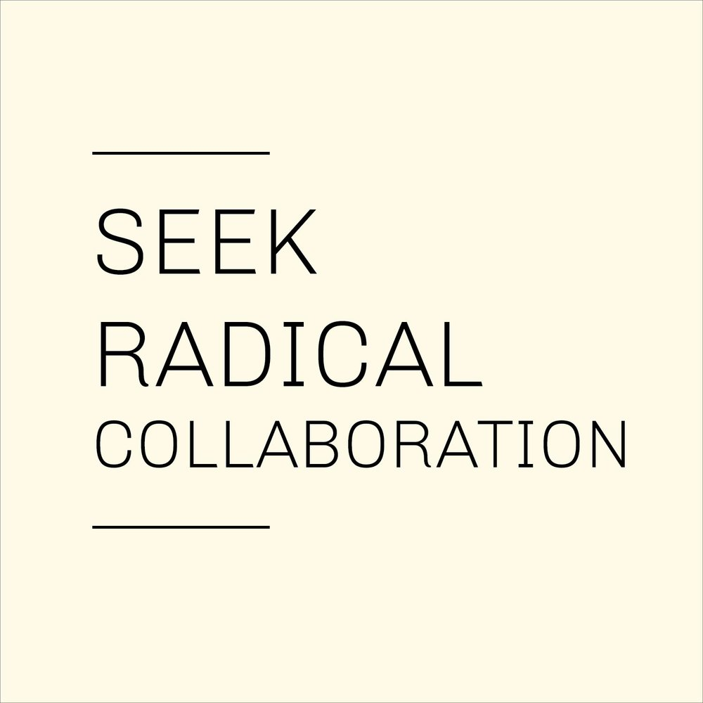 Seek and Include Radical Collaboration-01.png