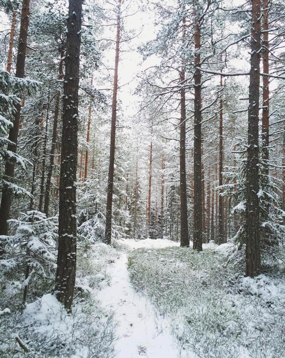 Norway-7.jpg
