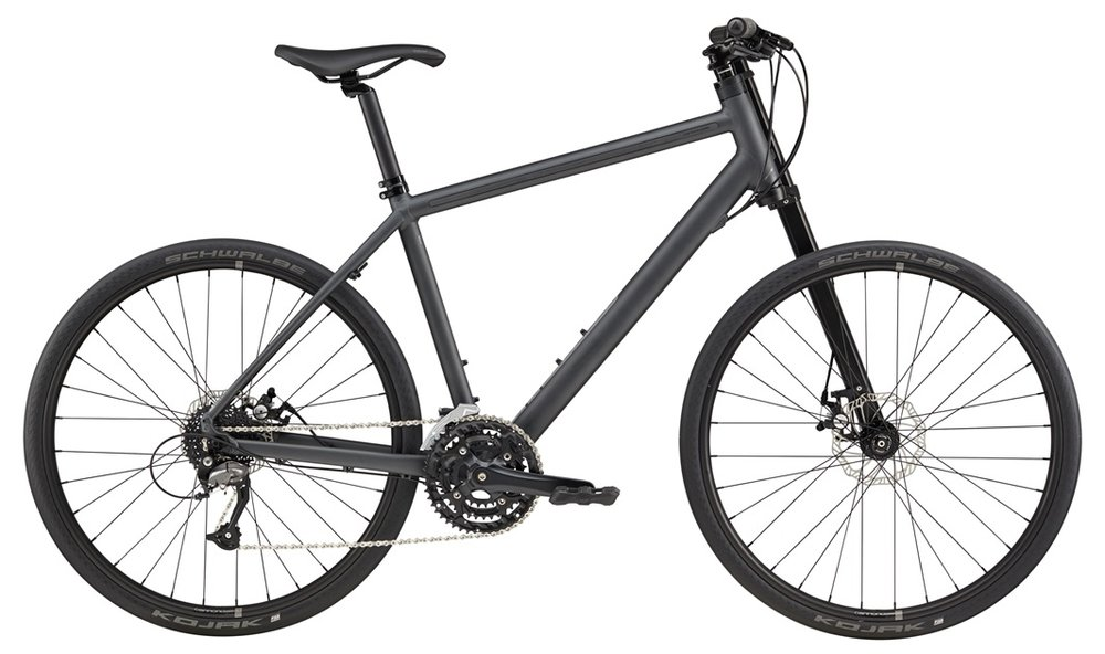 "Yes, this bike is really called the ""Bad Boy"" and you can check it out on  Cannondale's website  or at  Helen's Cycles ."