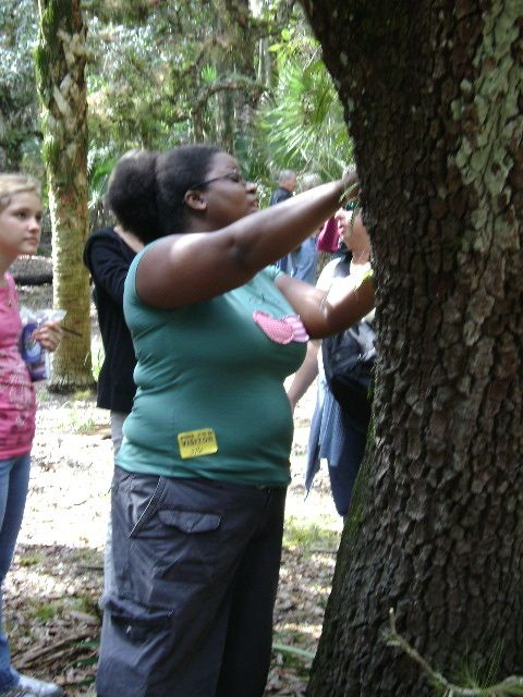 April 2008. Teaching 3rd and 5th grade, looking at lichen and moss to study Tardigrade habitats (Water Bears).