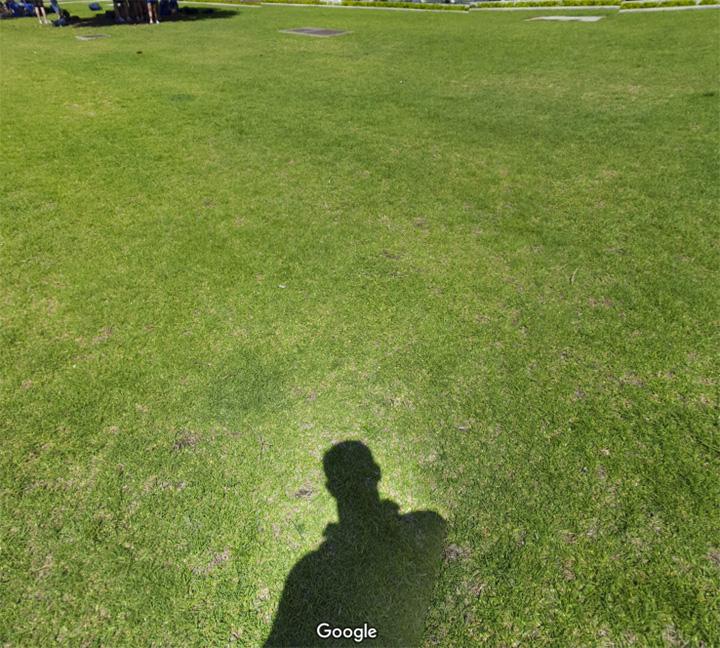 shadow_9.jpg