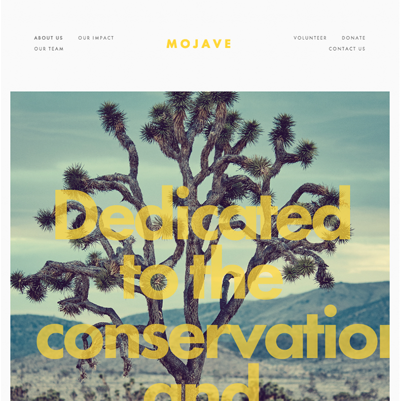 Mojave Squarespace template | Honey Pot Digital