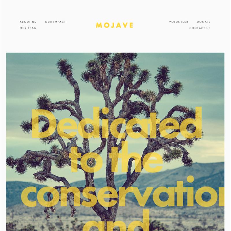 Mojave Squarespace template | Honey Pot Digital