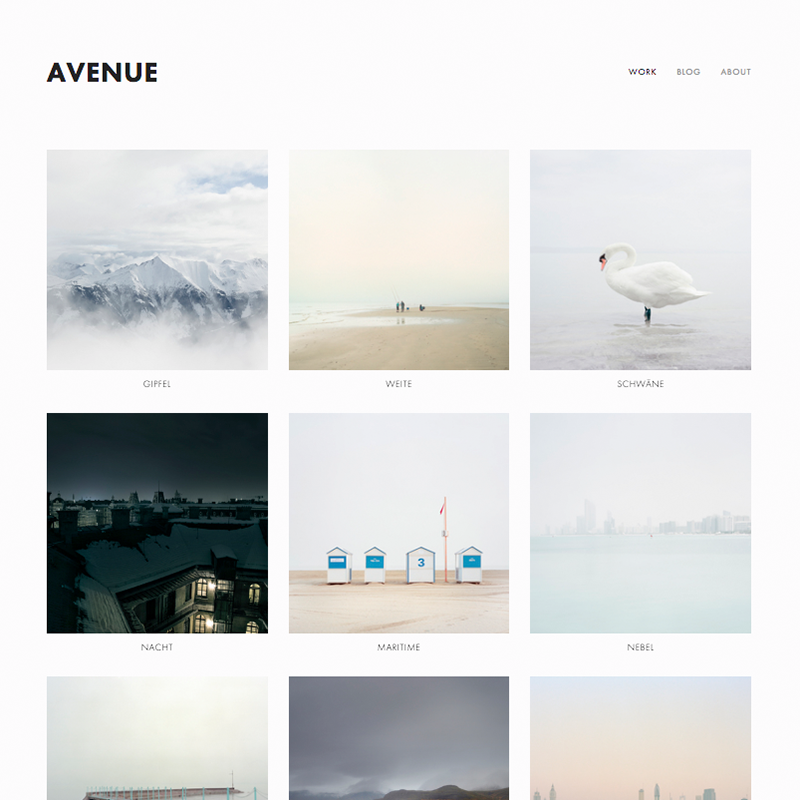 Avenue Squarespace Template | Honey Pot Digital