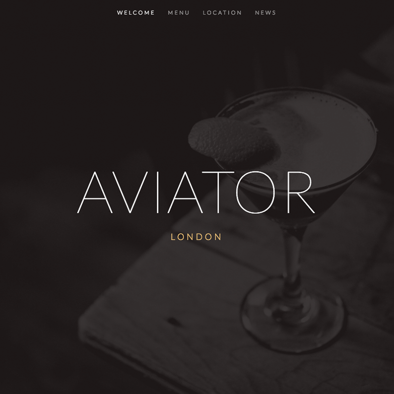 Aviator Squarespace template
