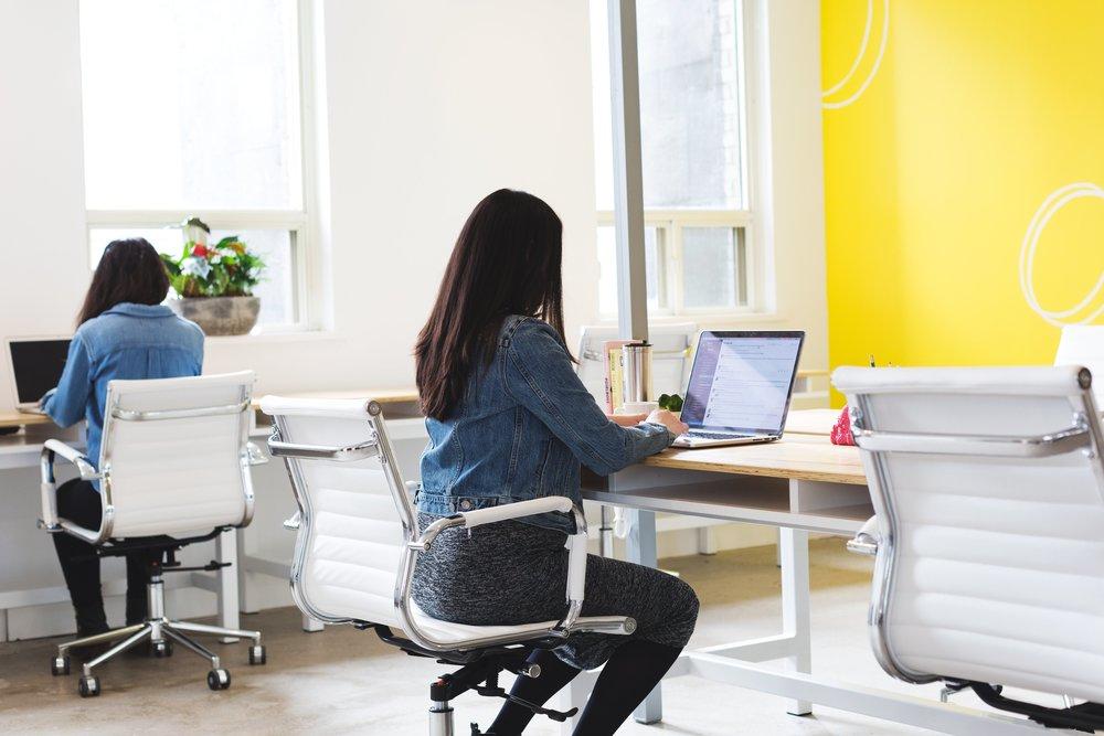 Website Design Services | Honey Pot Digital