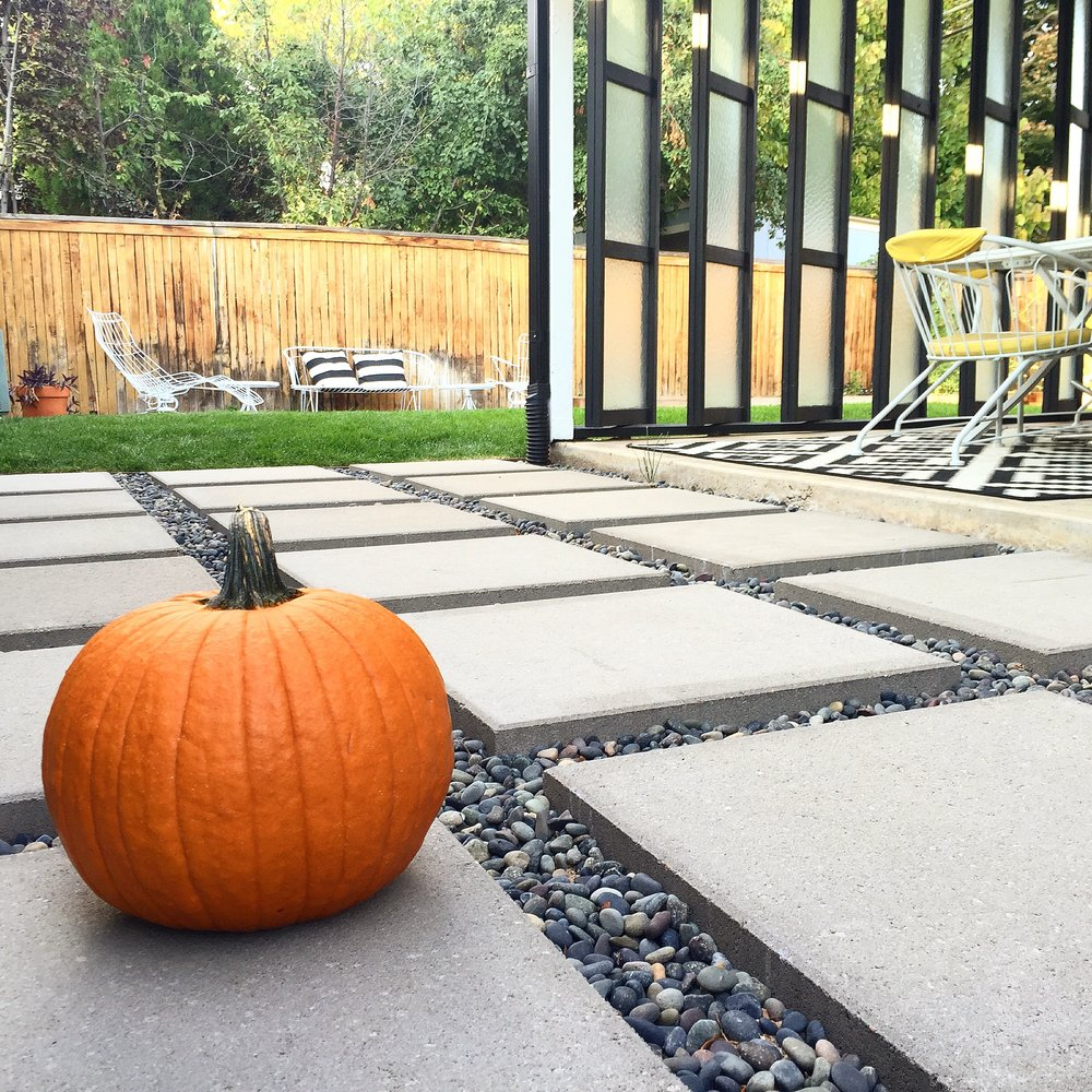 Backyard with Pumpkin.jpg