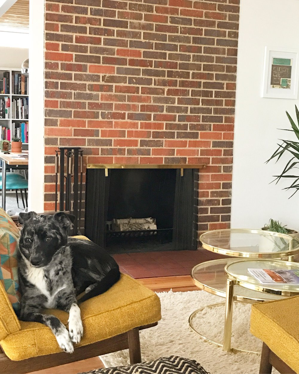 Fireplace with Sidney.jpg