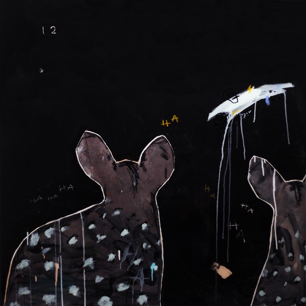 midnight hyena 02