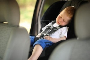 Is Your Little Sleeper a Sleep Champ?