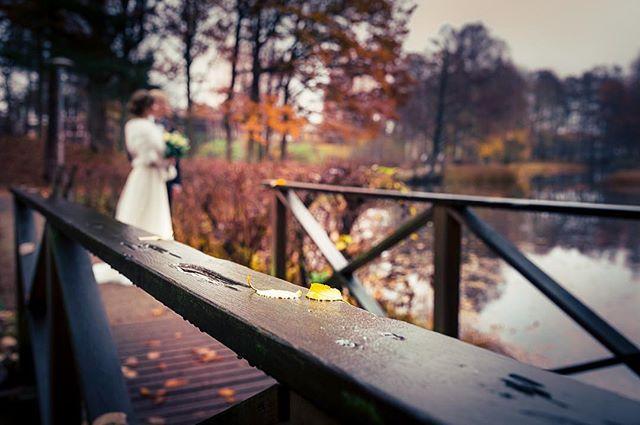 Höstbröllop.