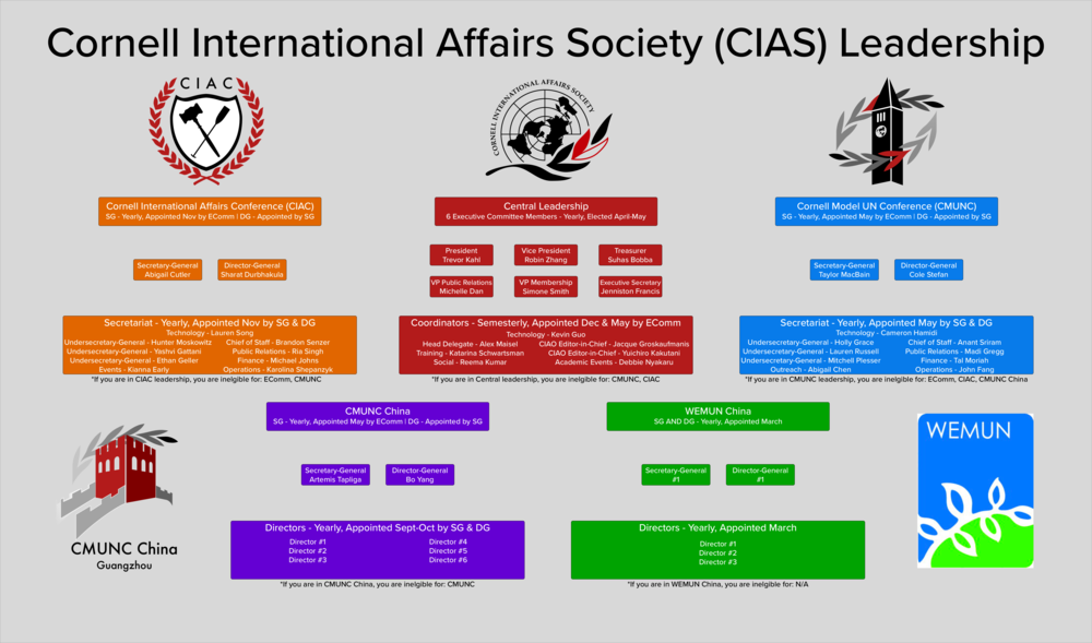 CIAS Infographic 2.png