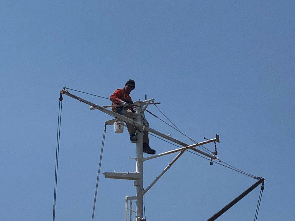 Leo painting the aft mast