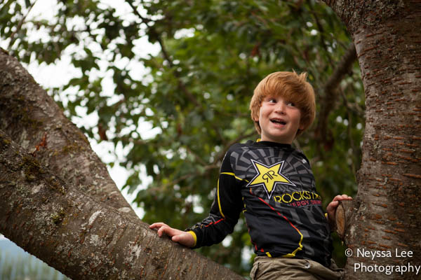 Snoqualmie Children's Photographer, Mr. Cool Photo, Kids in Trees Photo
