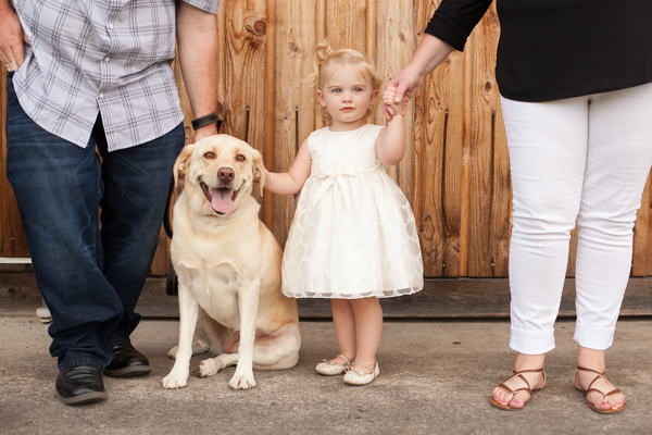 Photographing Sunshine and Dresses, sweet toddler girl and her dog