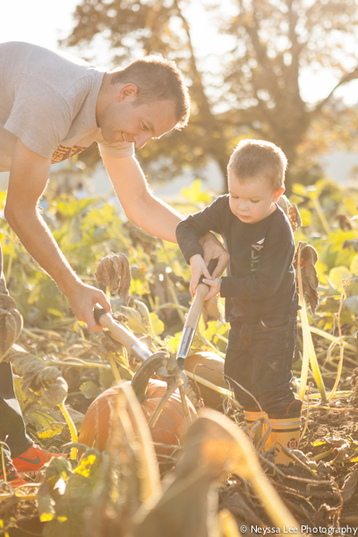 Seven Pumpkin Patch Photo Tips, Father and son picking pumpkins
