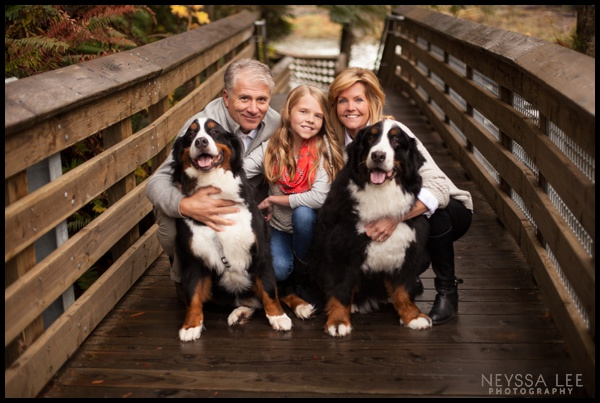 Fall Family Session, family photos on bridge, dogs in family photos