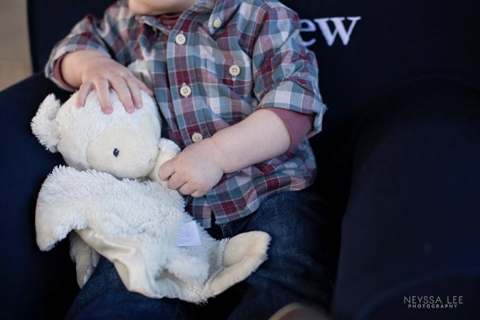 One year old boy photo, stuffed lamb photo,