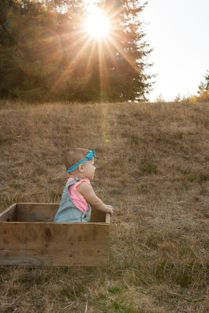 gorgeous sunlight, 8 month old baby girl, family photos, baby in a box in a field