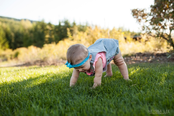 gorgeous sunlight, 8 month old baby girl, family photos, trying t crawl