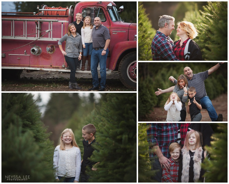 photos at a tree farm, Christmas mini sessions, Family Photos
