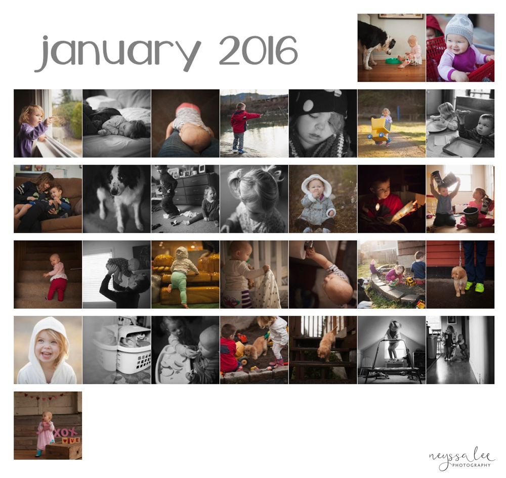 January 365 Photographs, Personal Photography Project,