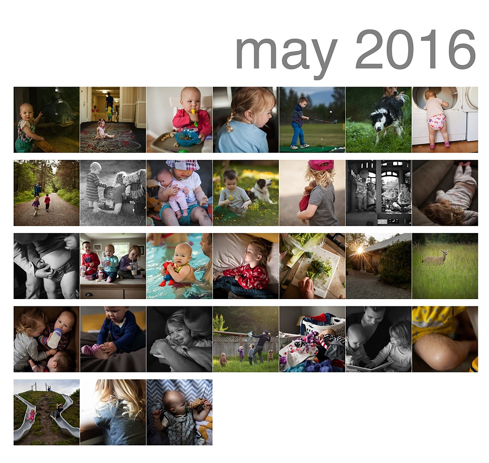 May 365 Photos, Lifestyle Photography, Snoqualmie Photographer