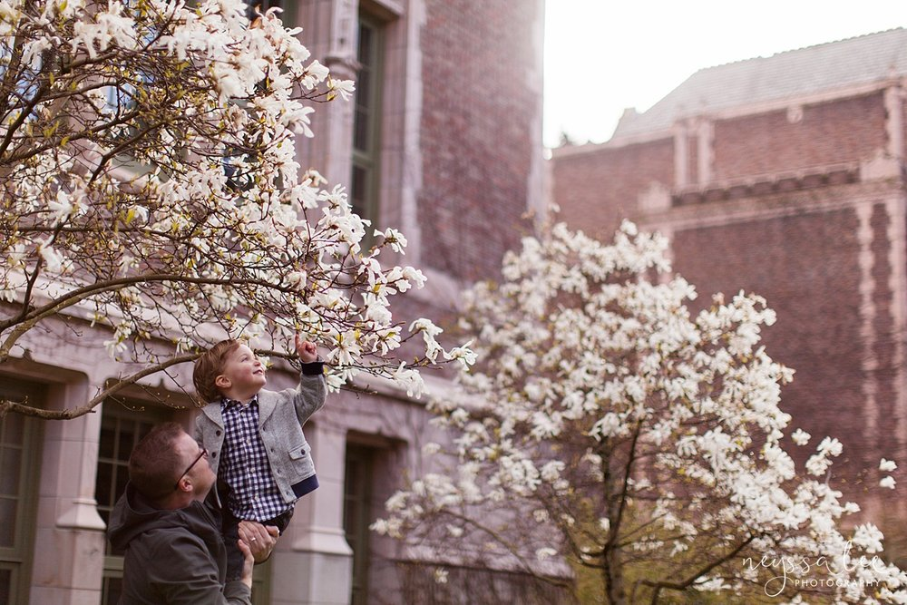 Neyssa Lee Photography, Family Photos in Spring, University of Washington Cherry Blossoms, Dad Holding Son Up to Pick Flower
