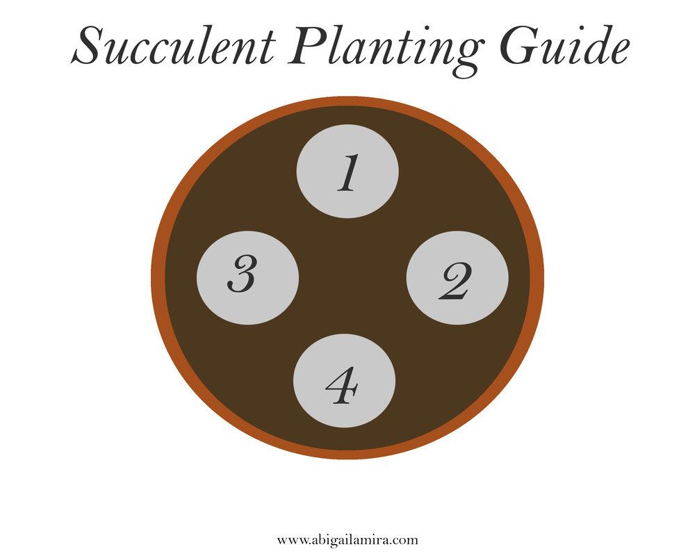 Planting Guide.jpg