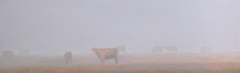 """""""Mist&Cows"""" Acrylic on Canvas 40""""x20"""""""