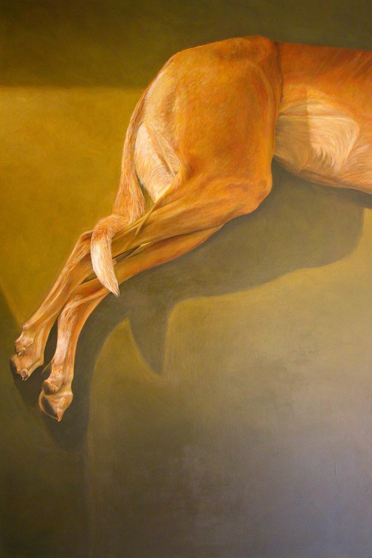 """Observation2"" Acrylic on Canvas 30""x60"""
