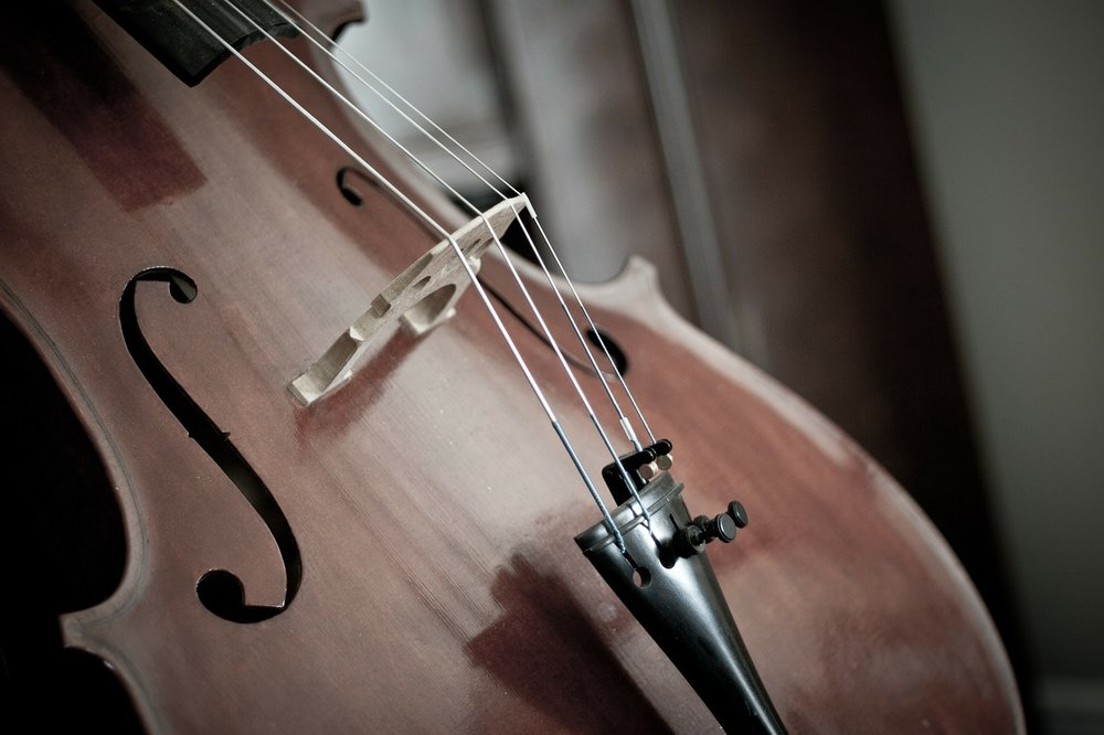 cello-110981_1280.jpg