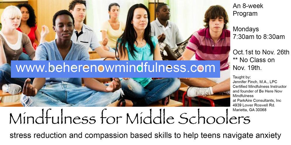 mindfulnessforMS.jpg