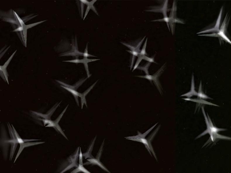 """""""Caltrops,"""" 1999; Digital Image; 12""""X9"""""""