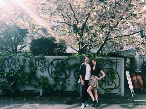 Cherry blossom and street art near Harajuku PC: Shelby Elsbree