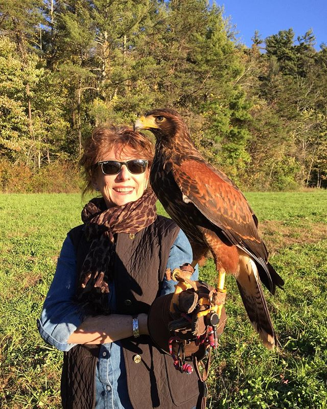 Heading out to see the Eagle Huntress movie so I'm throwing it back to when we had our own falconry experience. What an amazing experience. #ifyouevergetthechancedoit #MeriwetherDesignGroup . . . . . . #boss #love #interiordesign #interiordesigners #inspiration #beautiful #fun #instagood #dreamhome #nature #gooddesign #photooftheday #picoftheday #instadaily #home #fashion #igers #interiordesign #livingroom #designinspiration #pow #fall #birds #falcons #workitout #truth