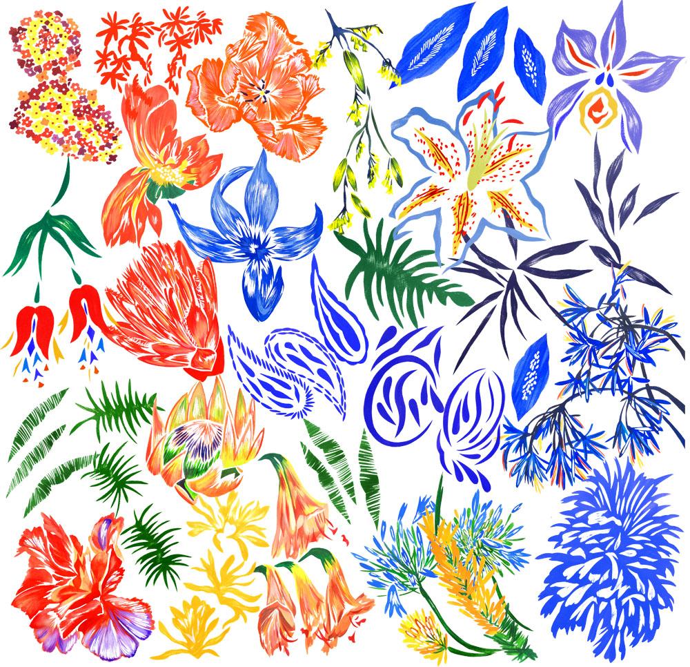 majorflowercollage.jpg