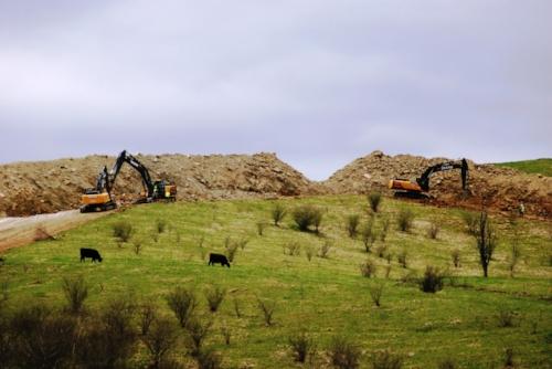 Bulls and bulldozers