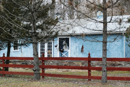 It's tough to tell from the picture, but this house, which is for sale, has a sickle, a stuffed chicken, and horse that is painted on it from the neck down, but has a three dimensional head. Sorry, but we didn't get the price.