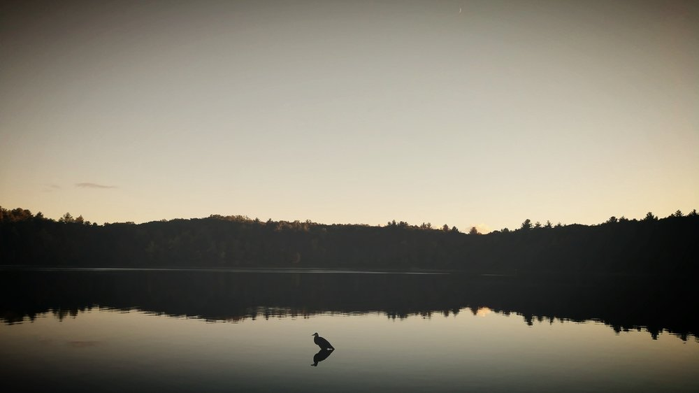 Evening on Walden Pond