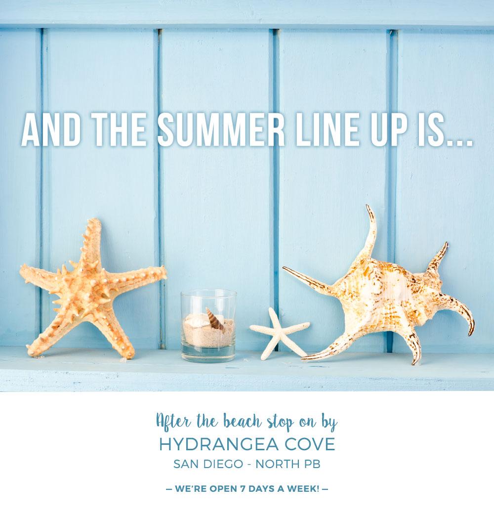 Summer Social Promo