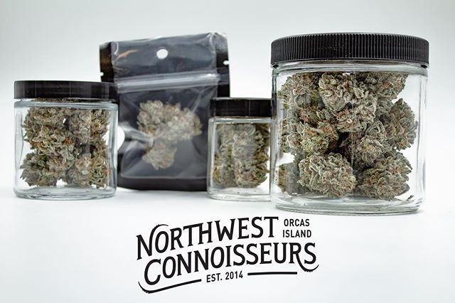 1 year in the making & our rebranding is finally complete!  Here is a sneak peek of the new logo.  First drops coming this week.  Stay tuned for more details.  #fromourstashtoyours . . . . . #blackberrykush#orcasislandgrown#microgrowery#craftcannabis#straightouttaeastsound#nwc#ilovemyjob#i502#cannabis#northwestconnoisseurs#nwconnoisseurs#pnw#cannabiscommunity#sanjuandabbers#washingtonsfinest#stillfarming#islandstoners#orcasisland#loil#seattlestoners#weedandwomen#nwc#terpenes#trichomes#legalizeit#islandvibes#indica