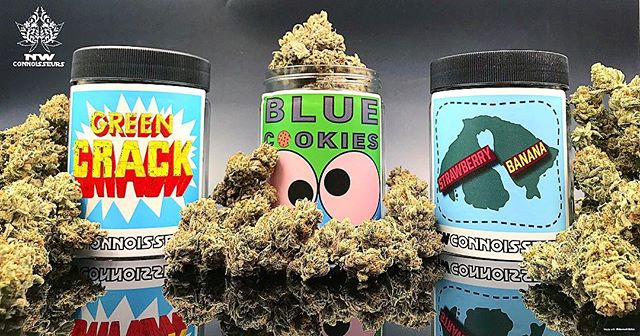 New lineup!  Excited to share all this 💚 @nwconnoisseurs . . . . . #bluecookies#straberrybanana#greencrack#indica#sativa#orcasislandgrown#straightouttaeastsound#nwc#ilovemyjob#i502#cannabis#nwconnoisseurs#pnw#cannabiscommunity#washingtonsfinest#710society#stillfarming#islandstoners#orcasisland#weedstagram#highsoceity#topshelf#loil#seattlestoners#terpenes#trichomes#legalizeit#islandvibes