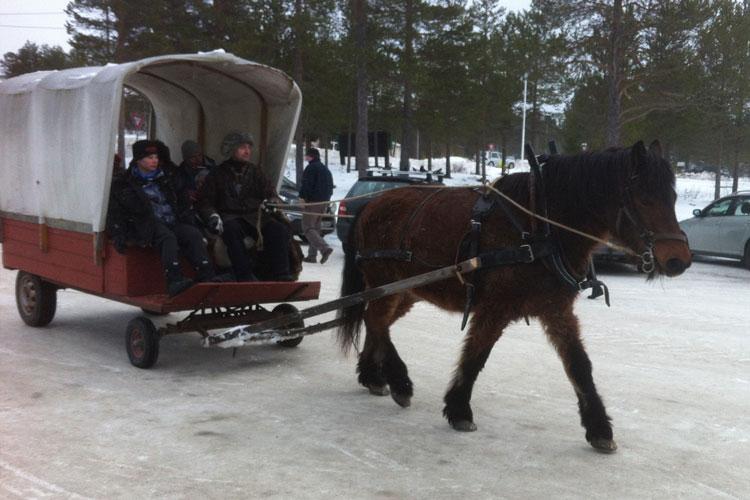 Horseriding03.jpg