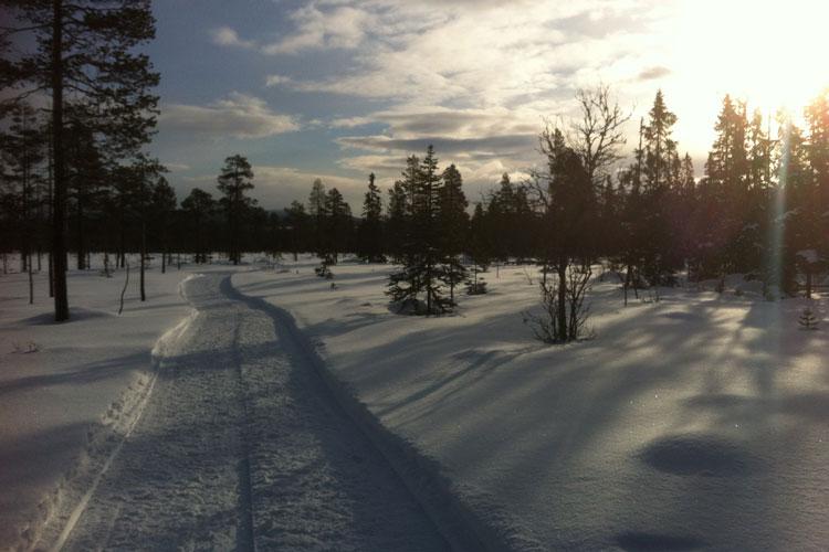 Skiing01.jpg