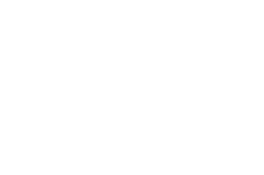 OUTSTANDING SCREEN STORY - Zed Fest Film Festival - 2017(1).png