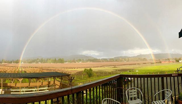 A little rain ain't to bad. We will be open tomorrow, rain or shine, and celebrate the holiday with us. Come enjoy our new 2016 Syrah, one of our most popular varietals. #wine #rainbow #rainorshine #winery #syrah