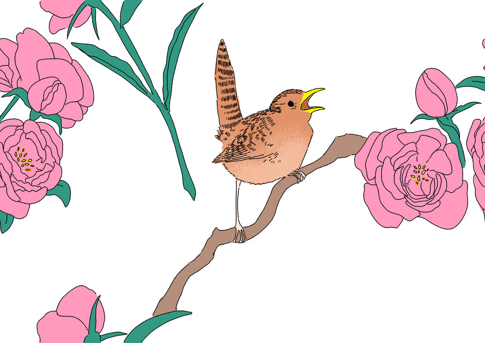 Wren and Peony pattern