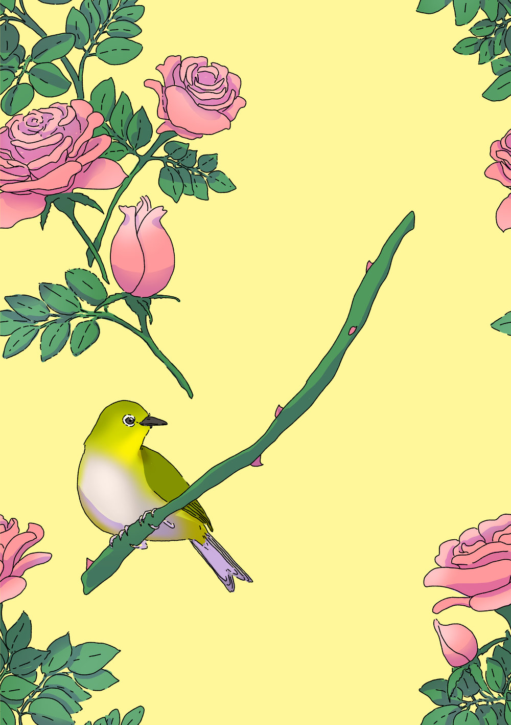 Japanese White-Eye and Rose pattern